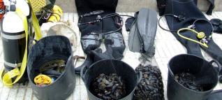 mariscadors furtius que extreien musclos al Cap de Creus