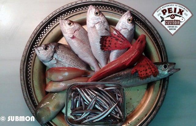 Peix de Custòdia: Foment del consum de peix responsable i de proximitat