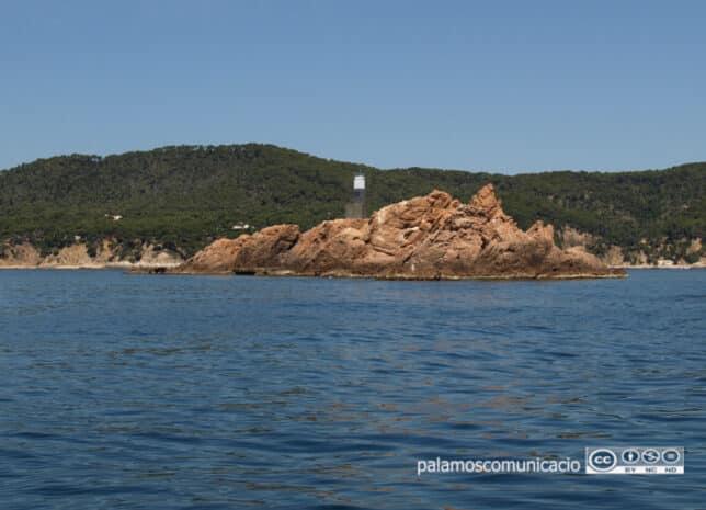 Amics de les Illes Formigues programa una xerrada sobre la troballa del vaixell romà