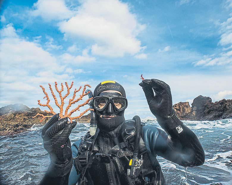Catalunya prohibirà extreure corall vermell durant 10 anys a partir del 2018
