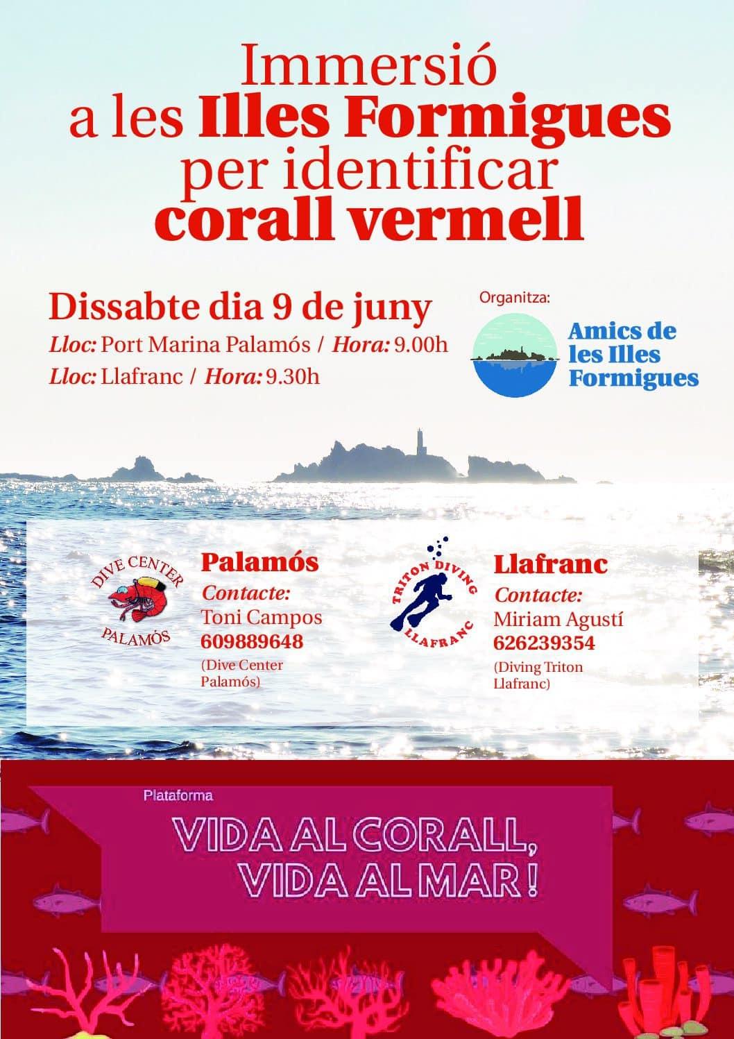 Sol·licitud al nou govern la protecció del corall vermell