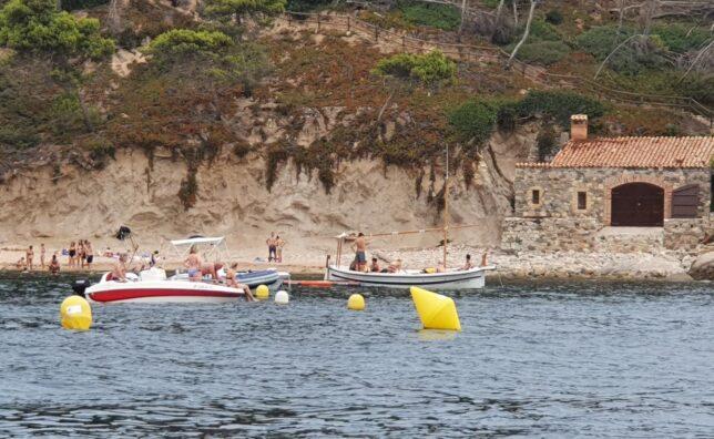 Salvem la Posidònia - Illes Formigues